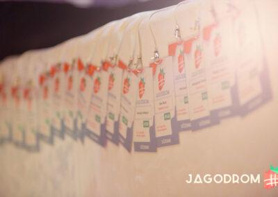 fotografija-sa-konferencije-jagodrom-u-hotelu-hill-jagodina